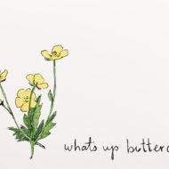 Buttercupdetail