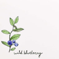 Wildblueberrydetail